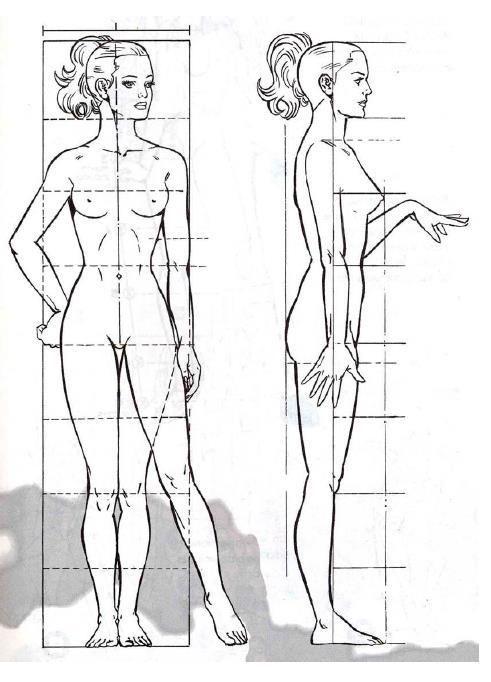 Proporciones Del Cuerpo Humano Femenino Cuerpo Humano Dibujo Cuerpo Humano Mujer Proporciones Del Cuerpo Humano