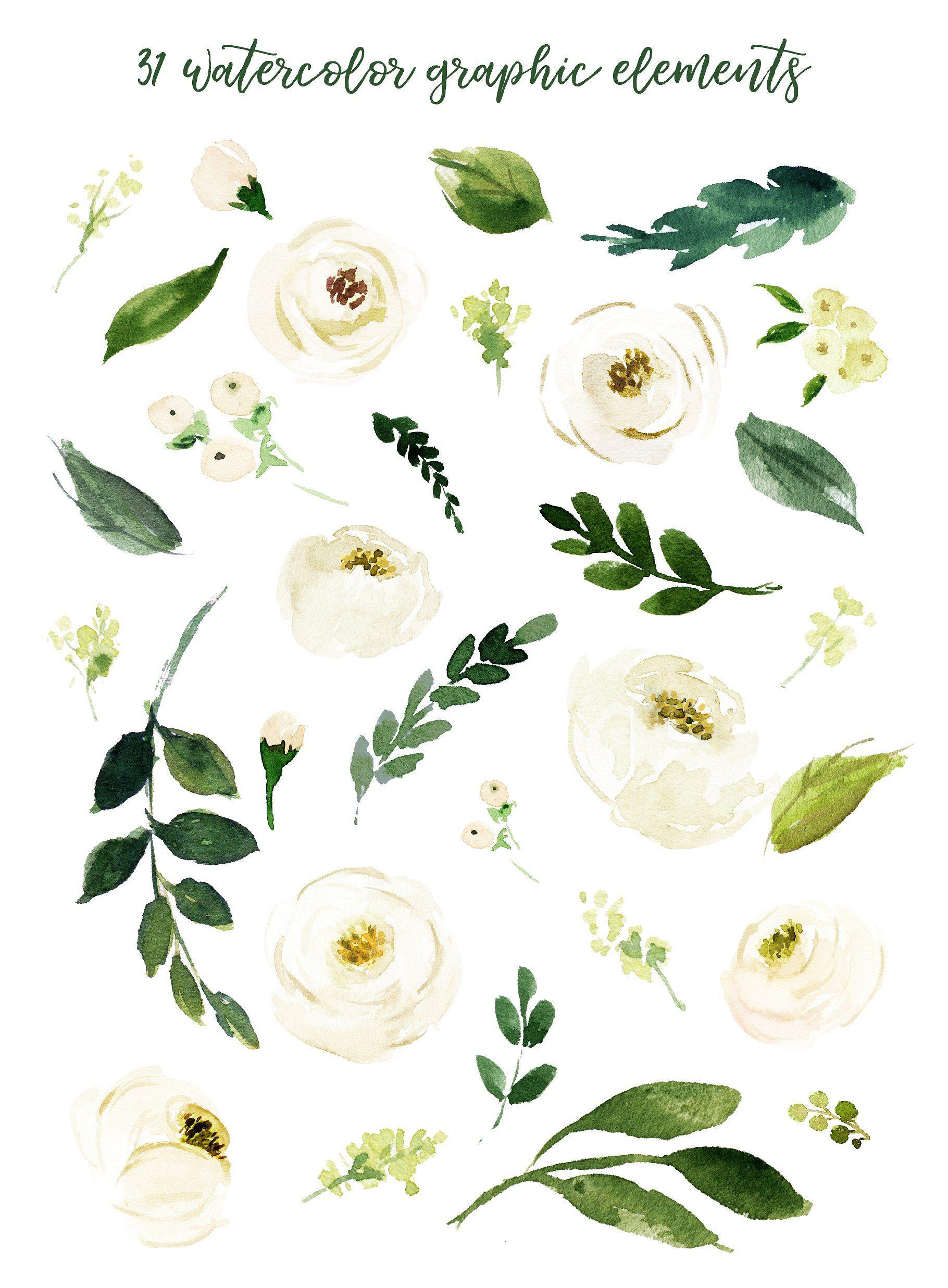 Watercolor White Flower Clip Art Flower Clipart White Flower Clip