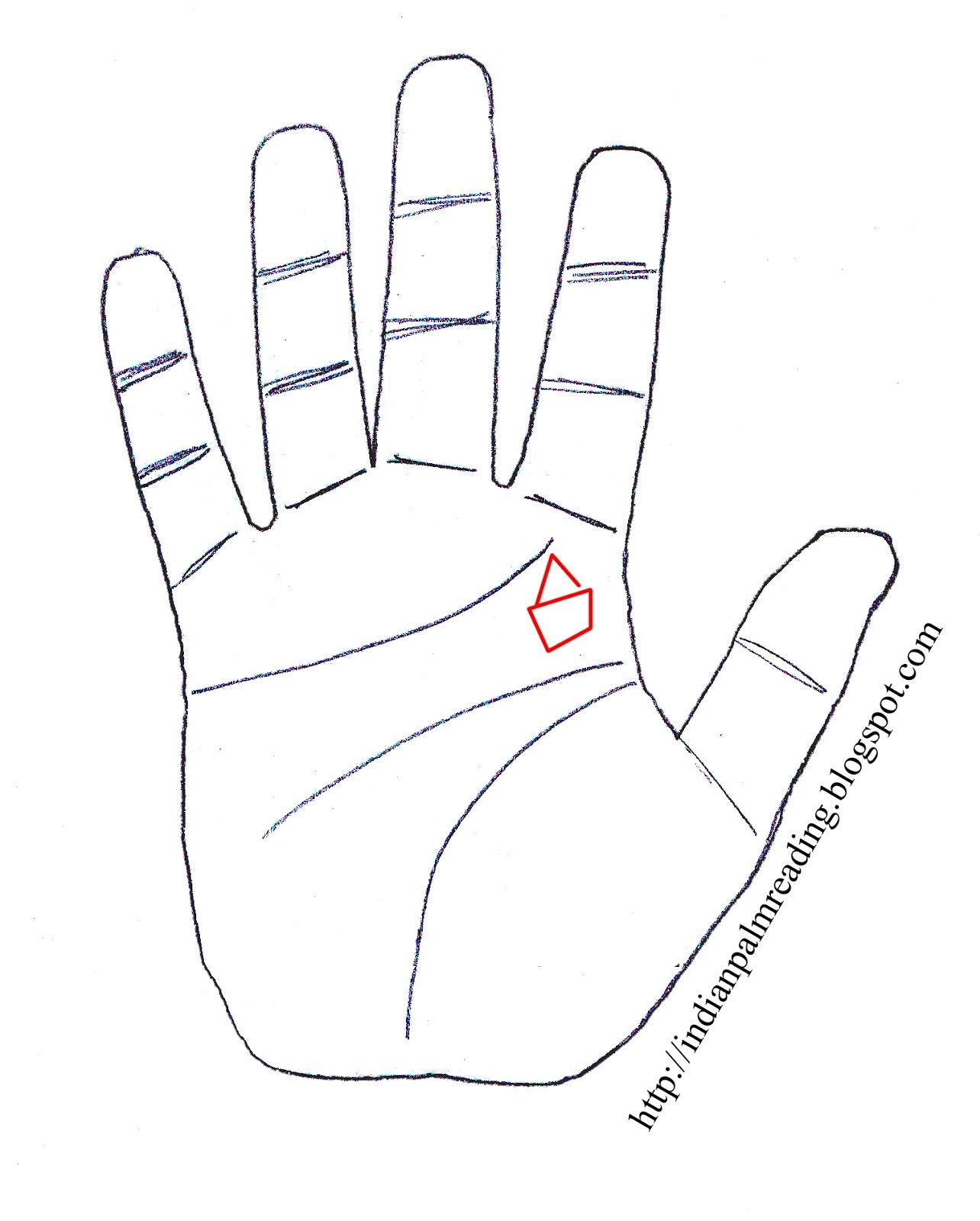 Indian Palmistry - Read Articles on Marriage, Life, Sun