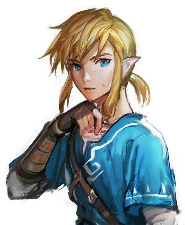 Image Result For Link Fan Art Legend Of Zelda Zelda Wii