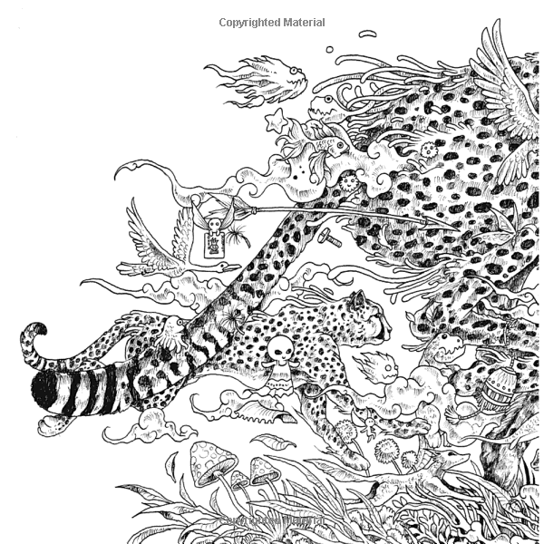 Animorphia An Extreme Coloring And Search Challenge Kerby Rosanes 9780147518361 Amazon Doodle ArtCheetahColoring BooksAdult