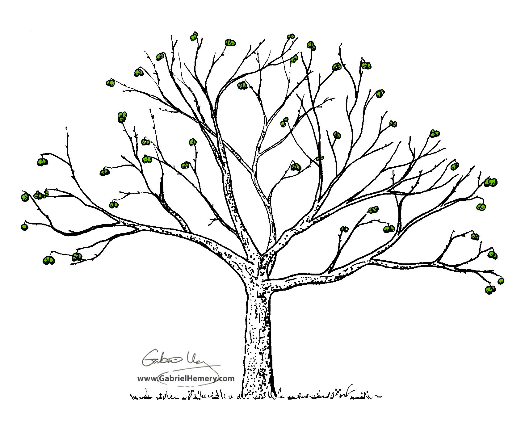The Kind Of Tree I Want For My Next Tattoo