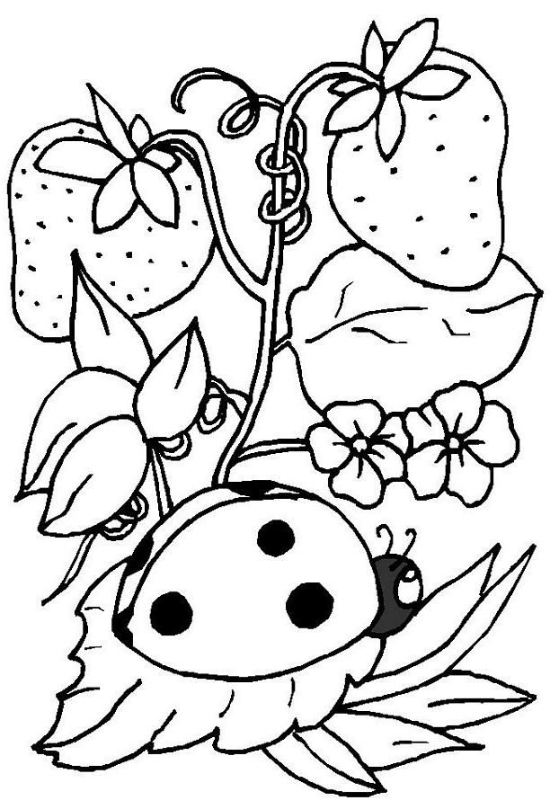 ladybug coloring pages free printables coloring pages spring coloring pages ladybug. Black Bedroom Furniture Sets. Home Design Ideas