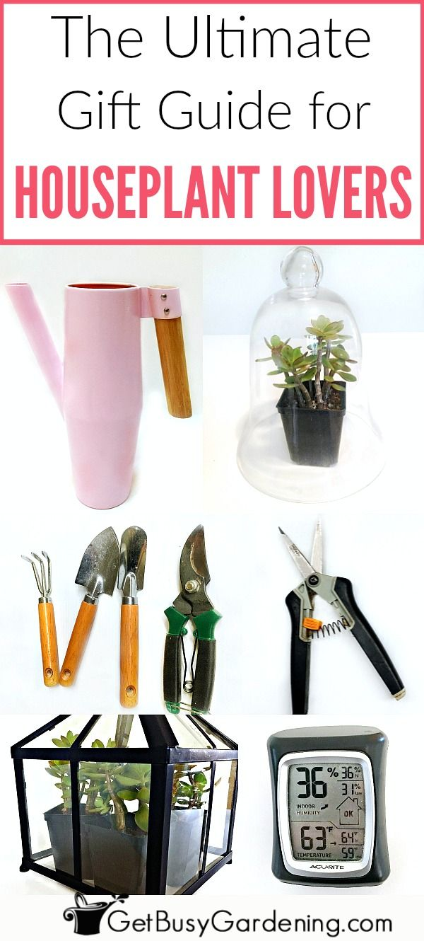Indoor Gardening Gifts Indoor gardening gift ideas the ultimate houseplant lover gift indoor gardening gift ideas the ultimate houseplant lover gift guide indoor gardening houseplant and houseplants workwithnaturefo