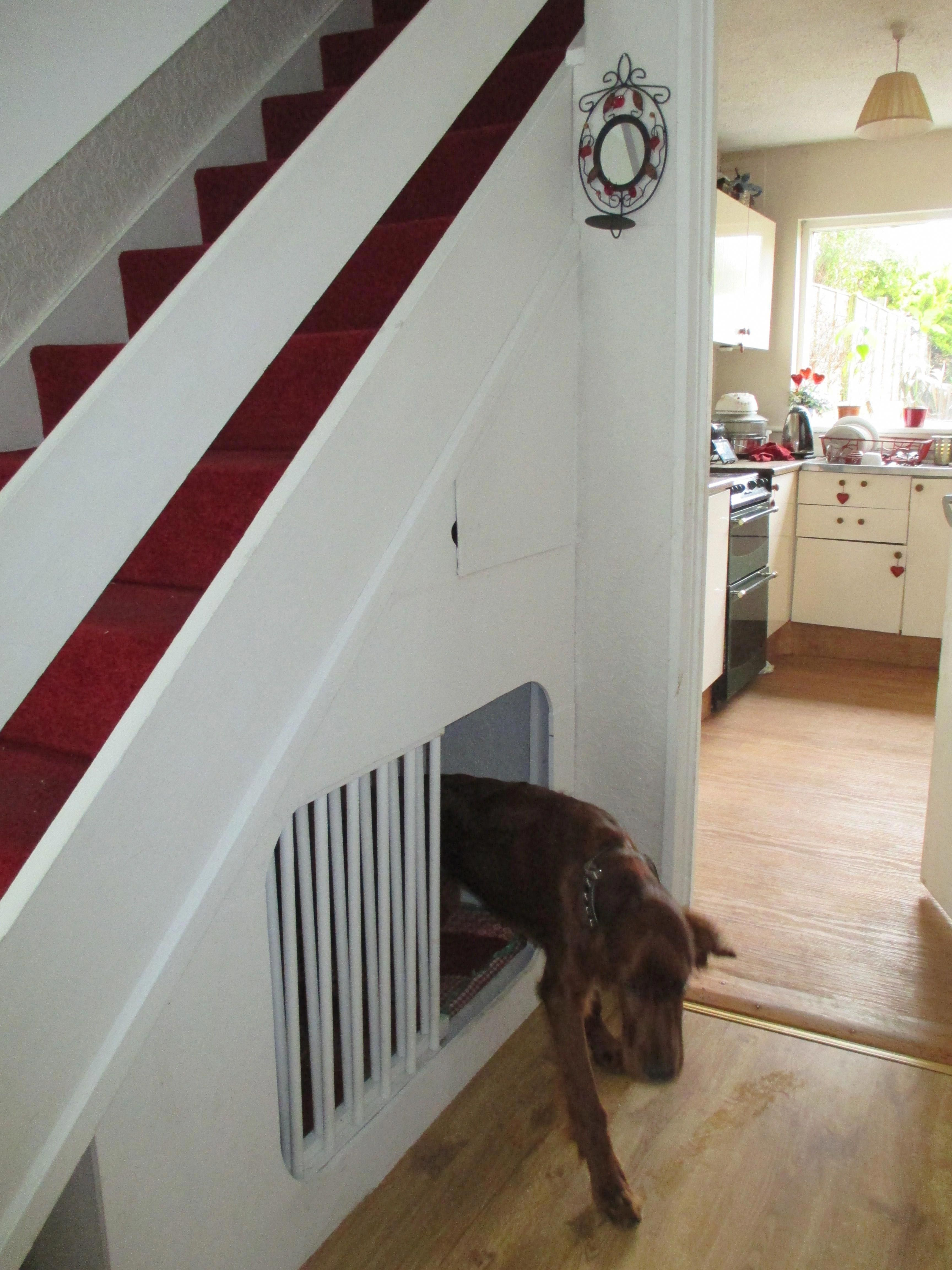 Dogs Hacks Dogs Diy Dogs Room Dogs Pictures Dogs Bed Dogs Collar Dogs Clothes Dogsfunny Under Stairs Dog House Dog Spaces Dog Rooms