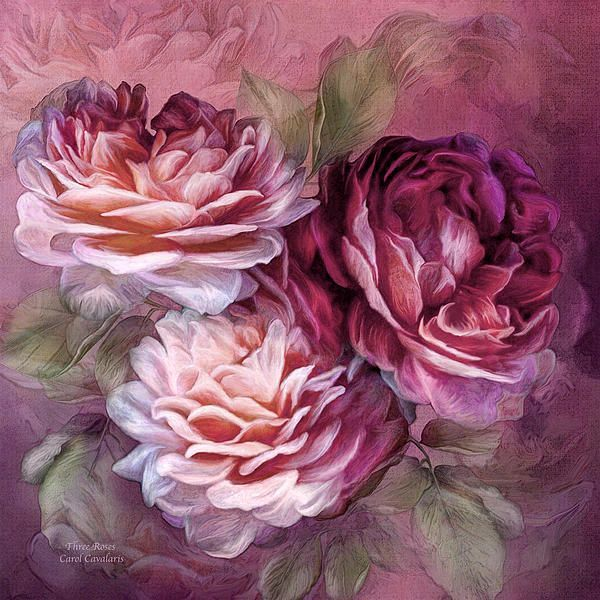 Three Roses Prose By Carol Cavalaris