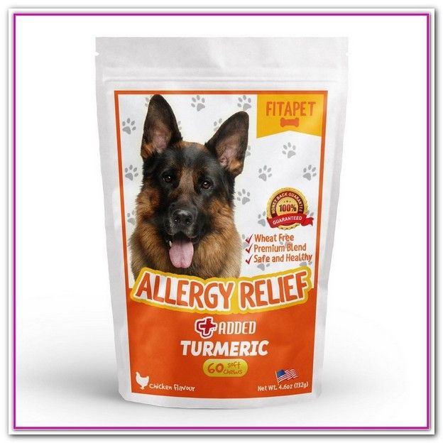 Best Dog Food For Skin Allergies Uk Harringtons Salmon