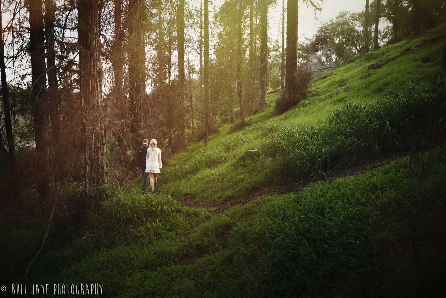 Romantic San Diego Engagement Shoot in the Woods