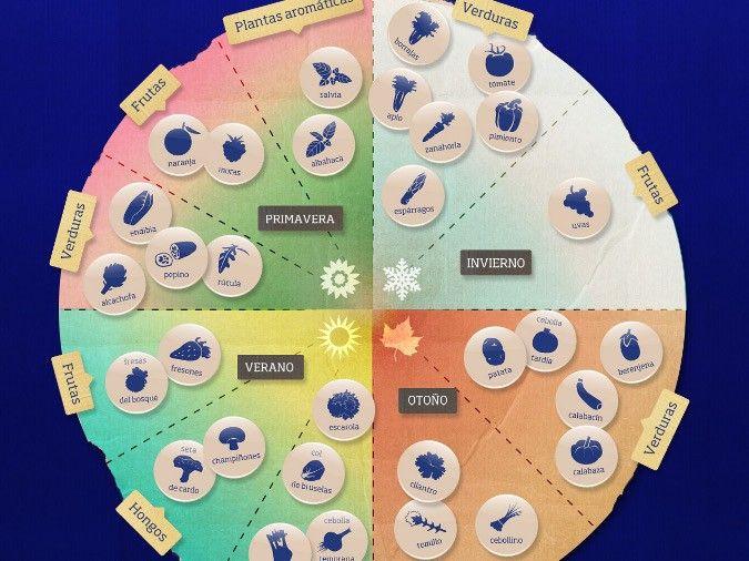 Infografía especificando los ciclos de siembra del huerto urbano por estaciones.