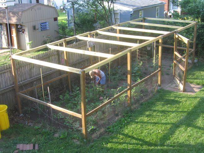 Pantyhose In The Tomato Patch Garden Enclosure Ideas Garden Beds