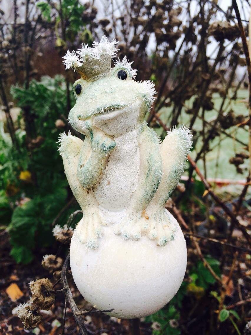 Groda med frost i kronan