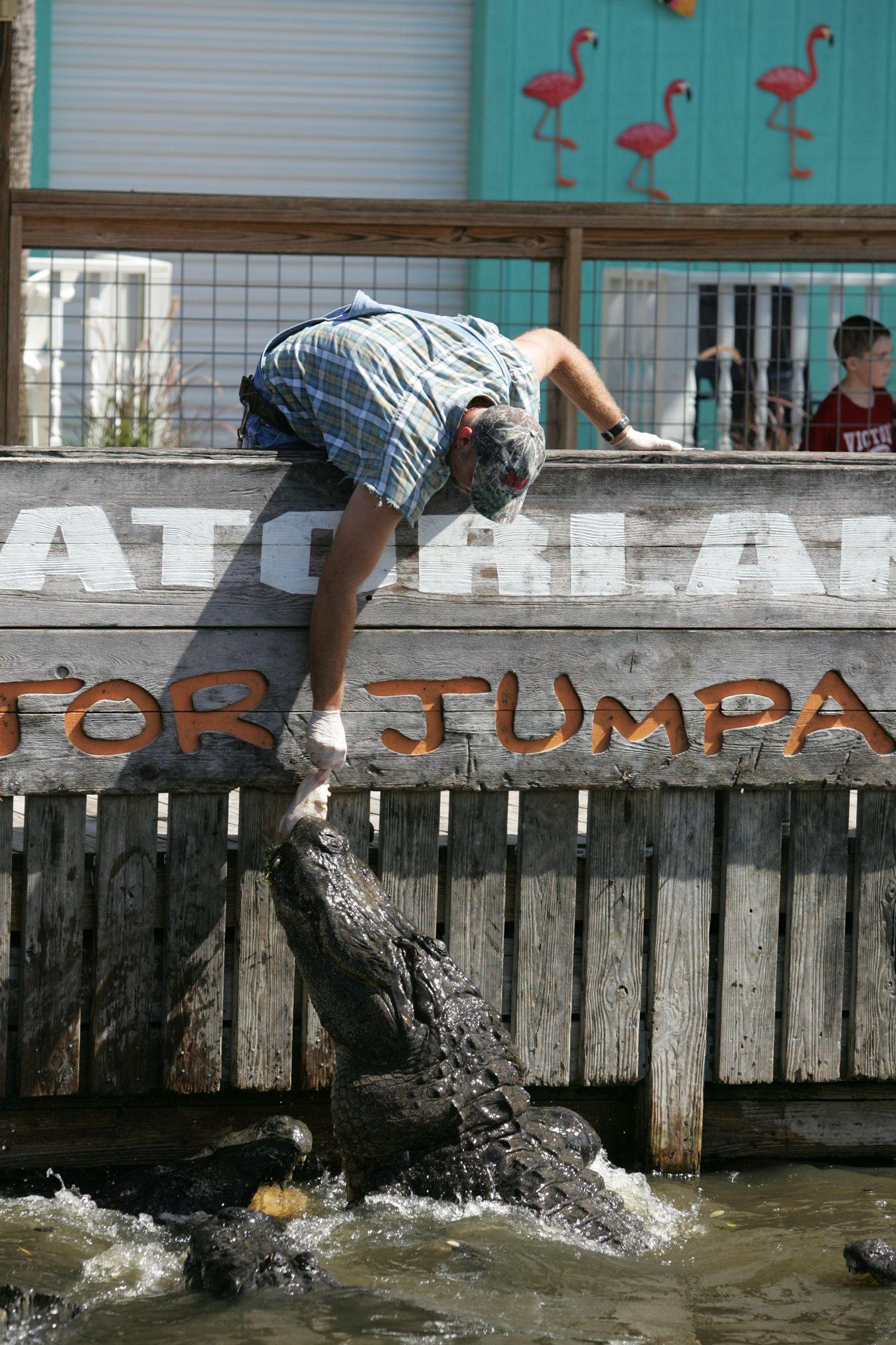 Gatorland Jumparoo