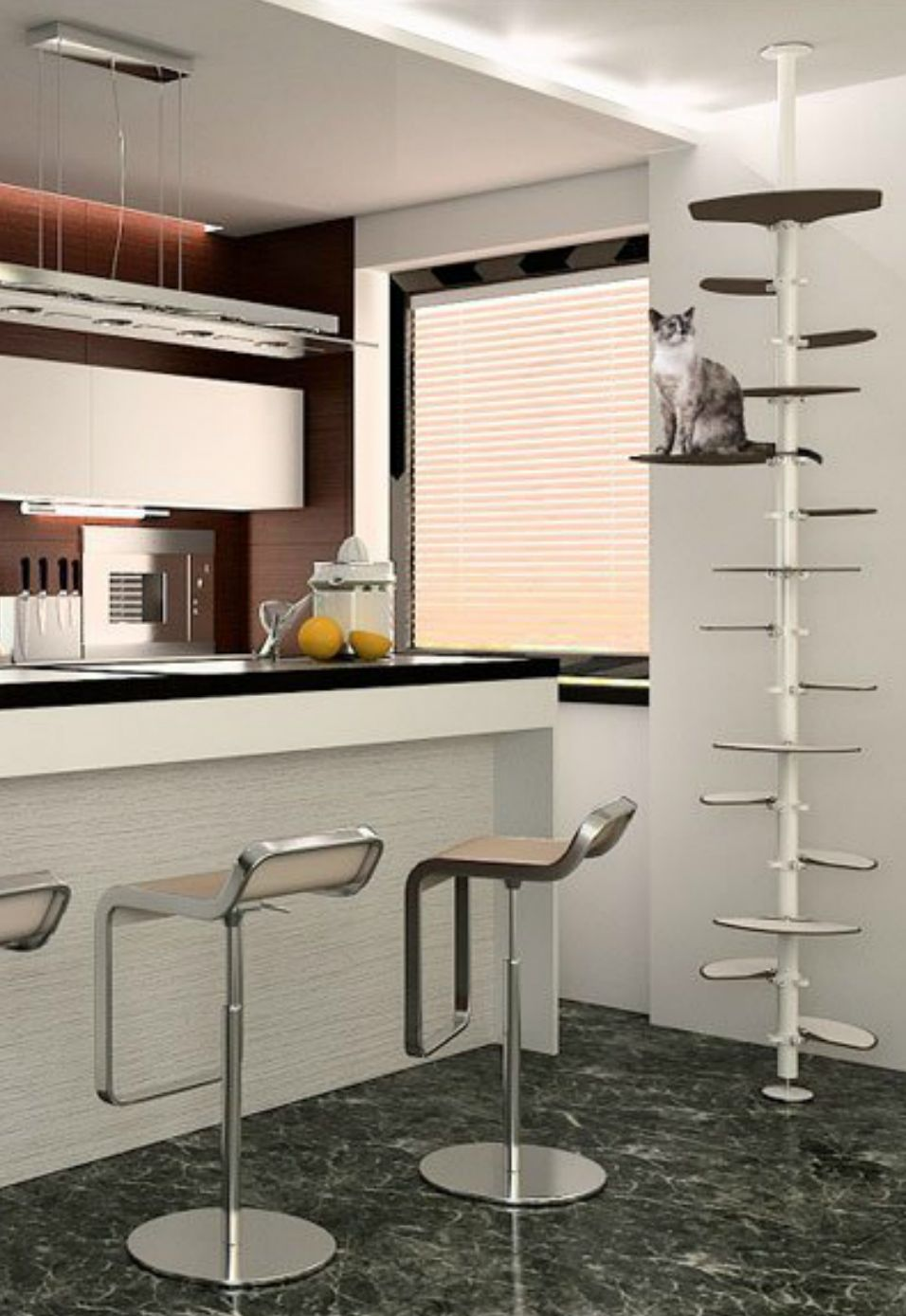 c7690f37a8e5 Cat Furniture Solutions for Apartments and Small Spaces - CatsPlay  Superstore