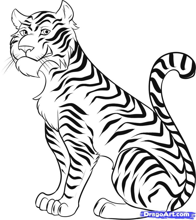 Scribble Drawing Animals : How to draw a cartoon tiger step by rainforest
