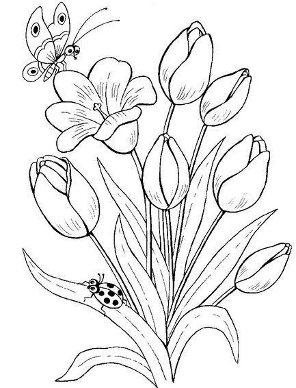 Раскраски цветы. Картинки для детей бесплатно. | Раскраски ...