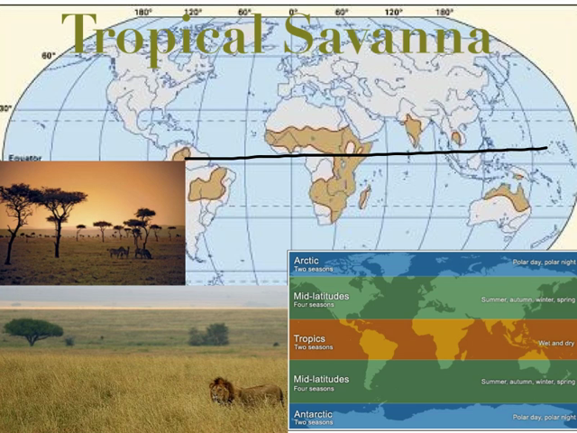 Climates Low Latitude   Lesson over the low latitude climates   http://www.knowmia.com/watch/lesson/36722