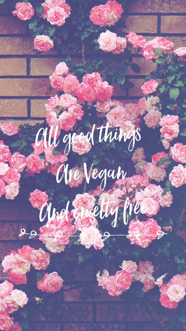 Beautiful Cute Roses Wallpapers Vegan Inspo ️ Quotes Pinterest Vegans Wallpaper And