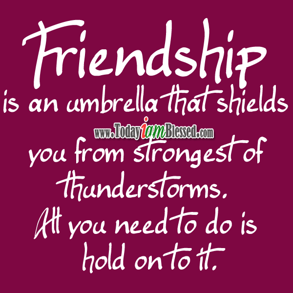 ♥ Friendship Quotes ♥ Friendship is an umbrella that shields you ...