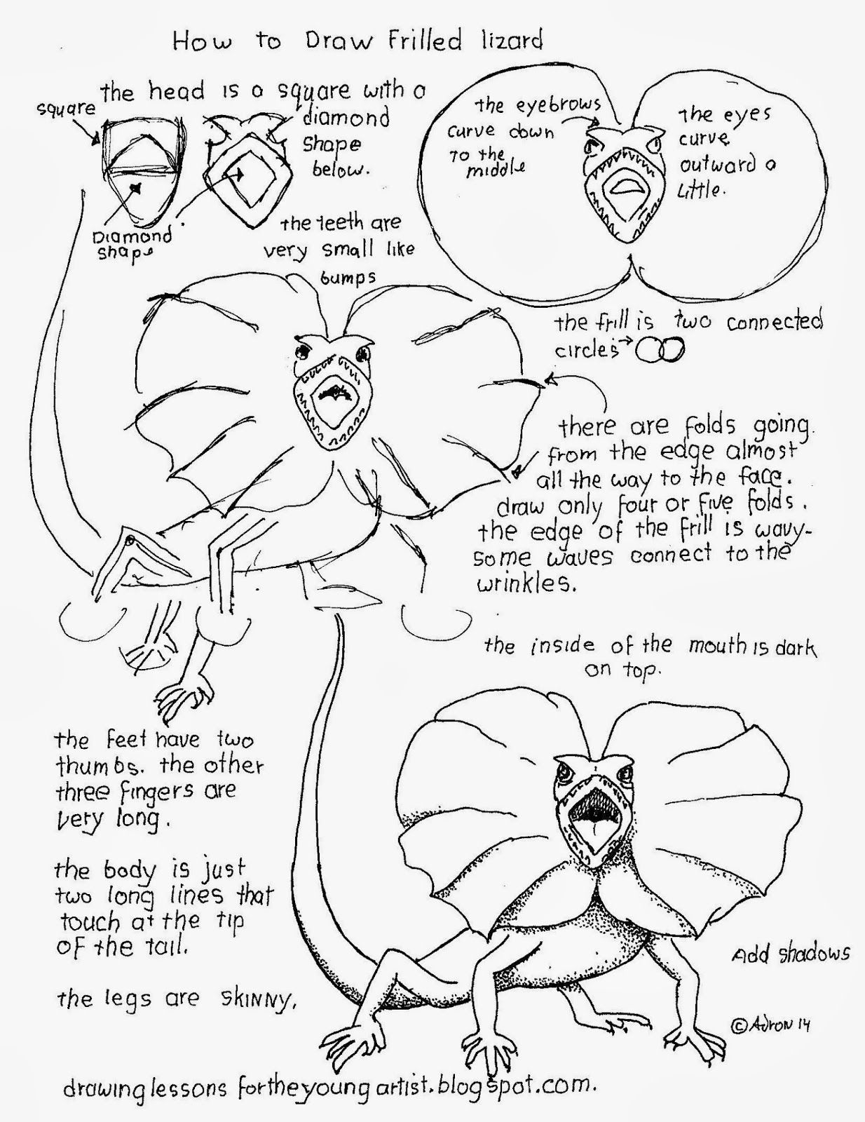 Free How To Draw An Australian Frilled Lizard Worksheet