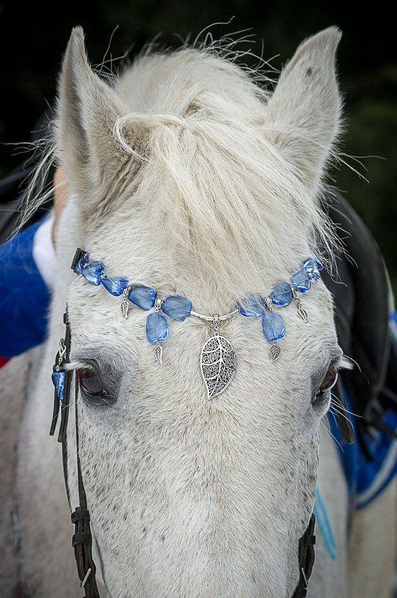 Photo of Artikel ähnlich Schmuck Stirnband für Pferd mit Namensschild. Perlen Stirnband mit Anhänger für Pony. Bling Tack für Designzubehör Pferdefoto Probleme auf Etsy