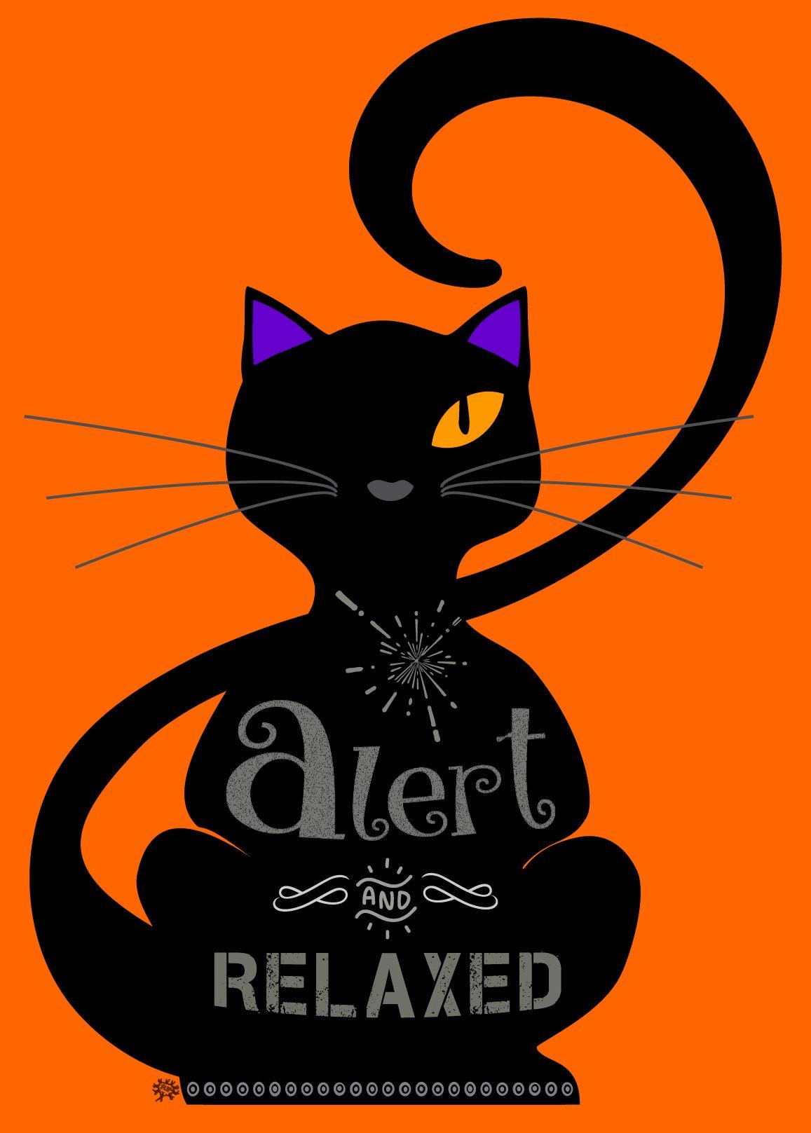 Cool cat. T shirt. Un gato alerta, pero relajado, sentado