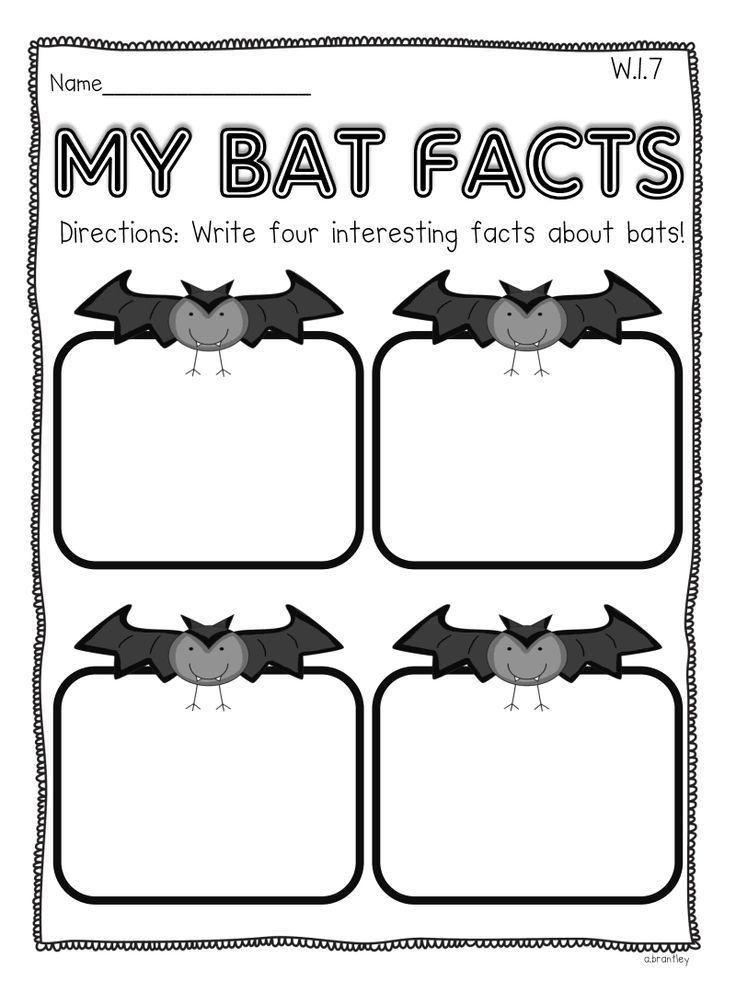 Pin by Allysha Sandor on Bats/Nocturnal Lesson Plan