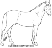 Walking Thoroughbred Horse Coloring Page Free Printable Coloring Pages Horse Coloring Pages Horse Coloring Horses