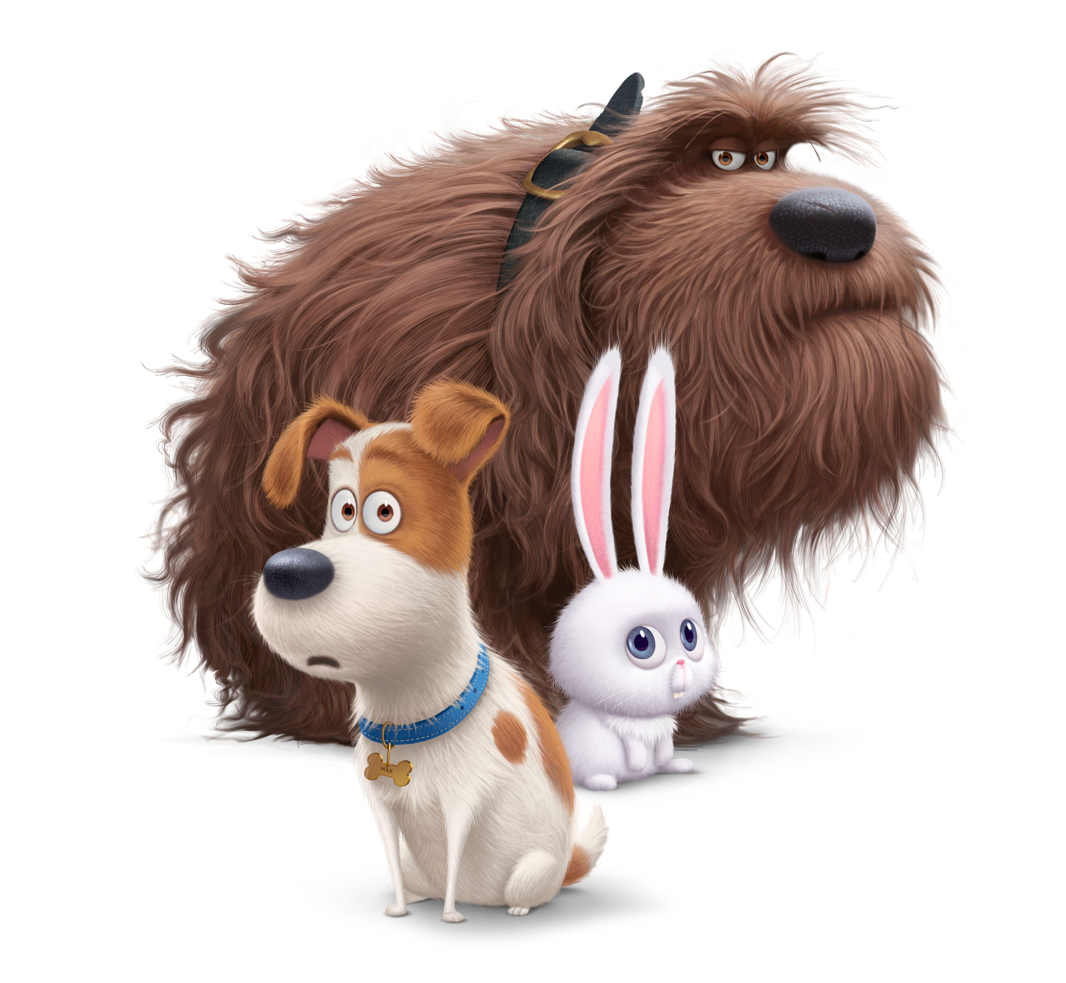 Illumination Entertainments  - Untitled Pets Movie