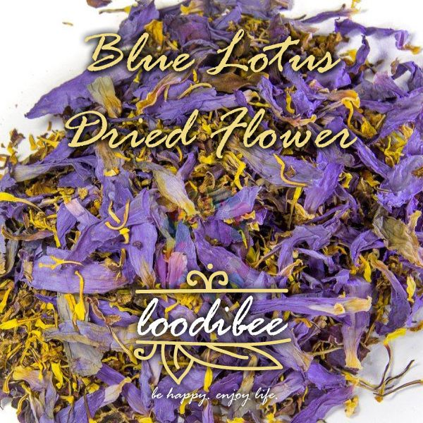 Blue lotus flower 4 oz premium dried nymphaea caerulea euphoria blue lotus dried flower ancient egyptians used it as a key to good health as an aphrodisiac enhancing sexual vigour for men and women as a remedy for all mightylinksfo
