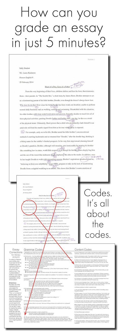 006 Exhausted by Essays? 5Minute Essay Grading System