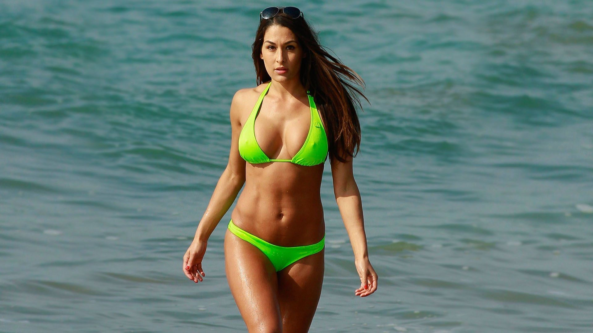 Sexy Nikki Bella In Bikini Wallpaper Download In 4K  Aaa -9803