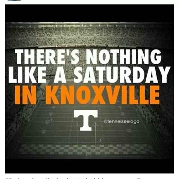 Pin By Lisa Mink On Go Vols Tennessee Volunteers Football Tennessee Football Rocky Top Tennessee