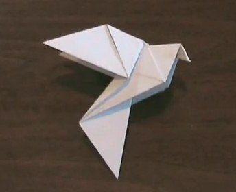 plegado de papel paloma