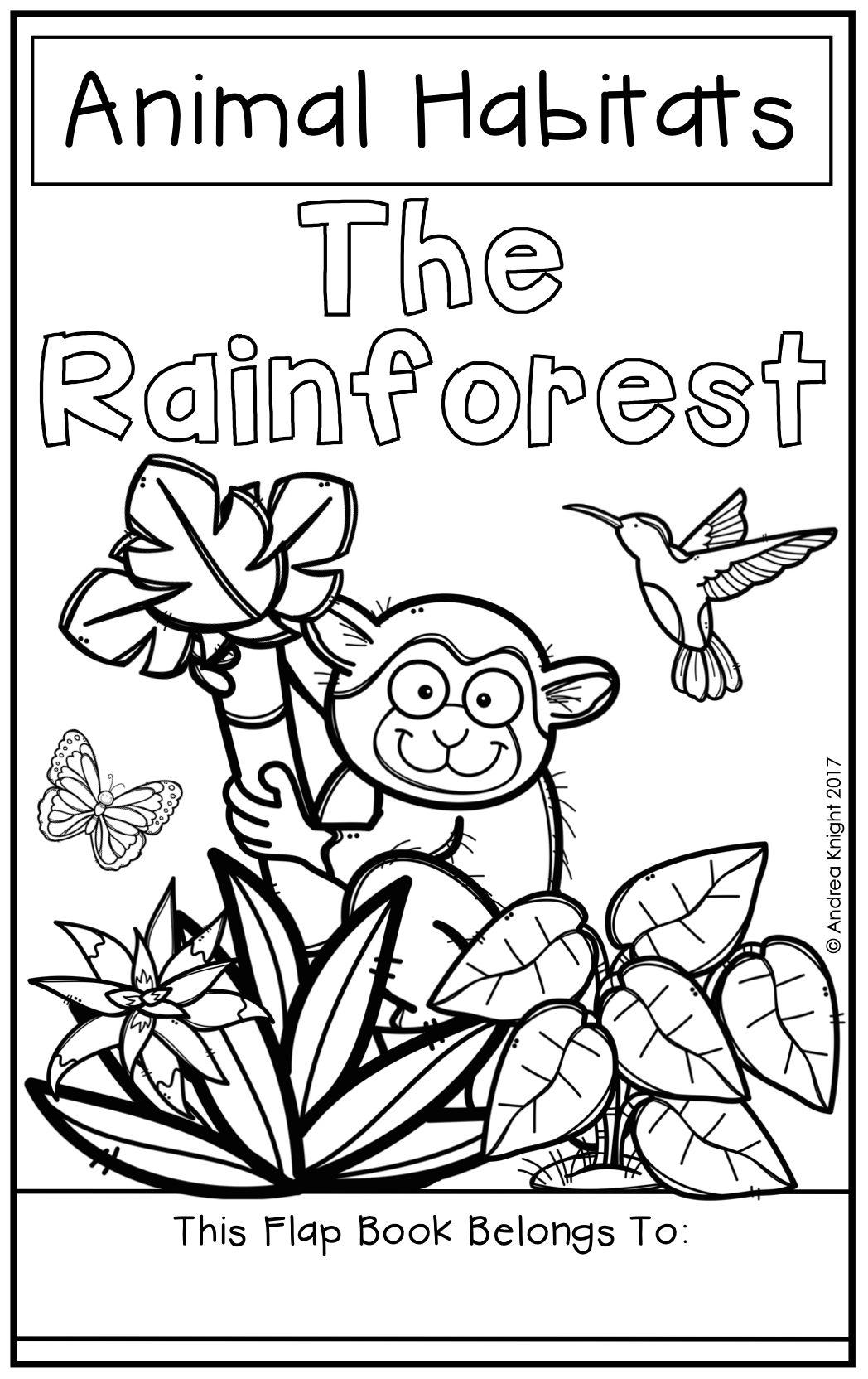 Animal Habitats The Rainforest A Flap Book Project For