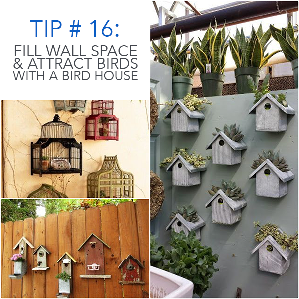 Fill Wall Space & Attract Birds With A Bird House | Patio ...