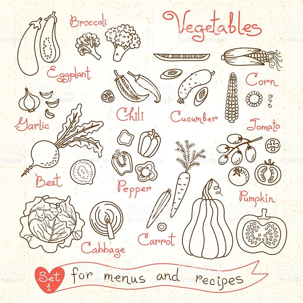 Set Drawings Of Vegetables For Design Menus Recipes And Packages