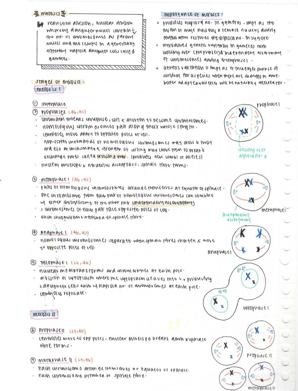 Aug 13 Biology