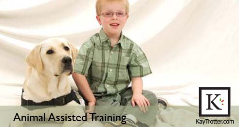 What Training Does My Dog Need To Become A Animal Assisted Therapy