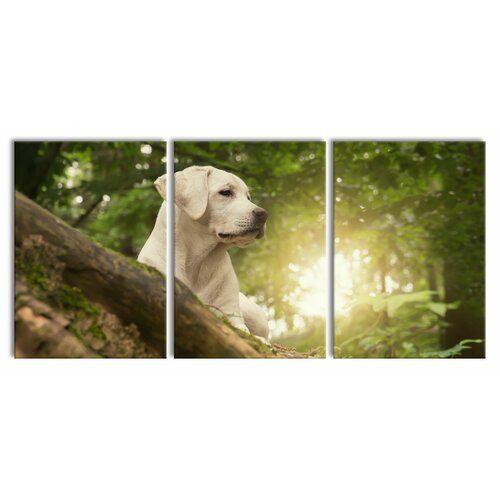 East Urban Home Labrador Puppy 3-Piece Photograph Set on Canvas   Wayfair.co.uk, #3Piece #Canvas #East #Home #Labrador #Photograph #puppy #Set #Urban #Wayfaircouk
