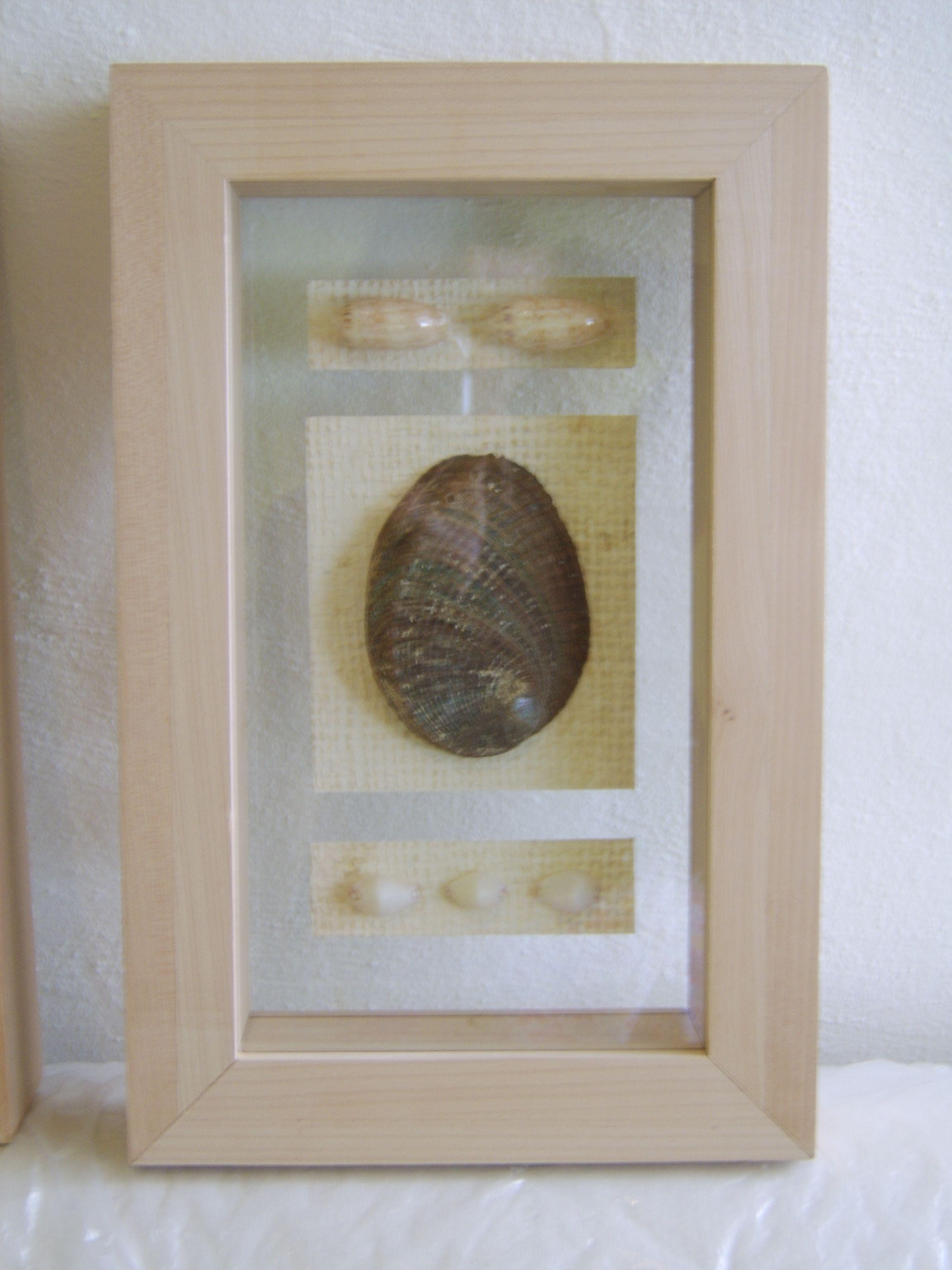 marco de madera de maple, con caracoles , encapsulado en tre 2 ...