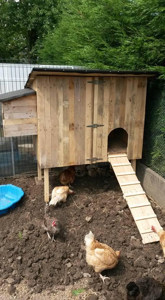 un poulailler de luxe pour pas grand chose poulailler coops raising chickens et permaculture. Black Bedroom Furniture Sets. Home Design Ideas