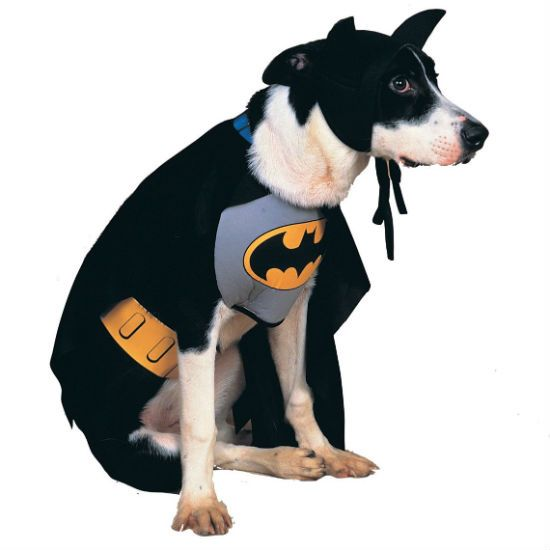 Doggy Superhero Costumes Cool Stuff Batman Dog Costume Pet