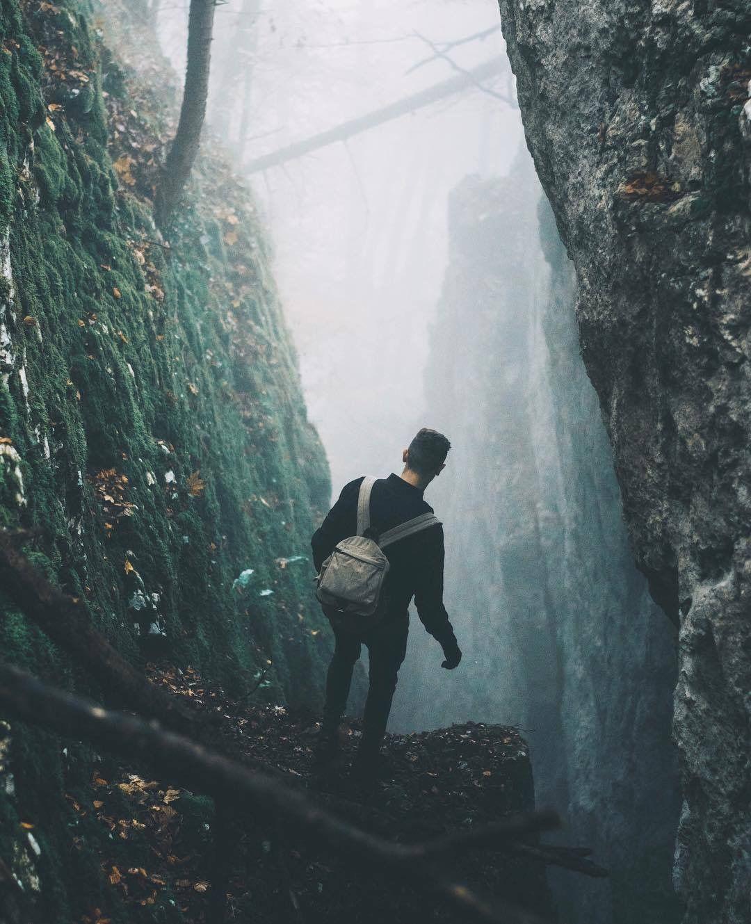 Explore Into The Woods ☽ Naturaleza Y Monta 241 As