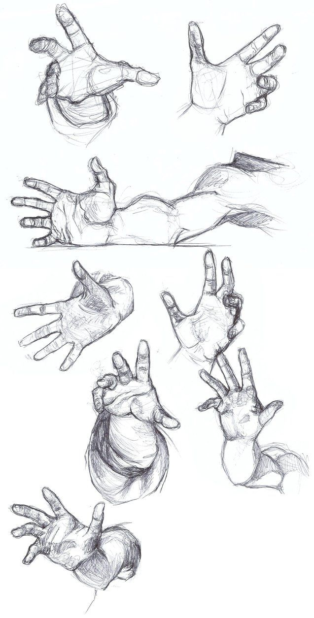 Hands are literally the hardest things to draw | Anatomy hands ...