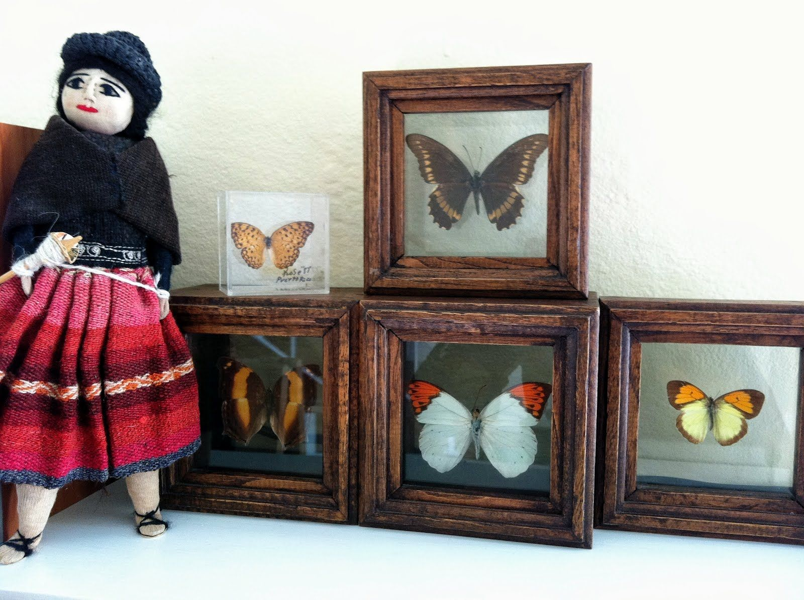 Idea - make miniature butterfly displays (3 D frames with scrapbooking butterflies or stckers?) | Source: Sara's Mini Creations - The Honeycomb Cottage