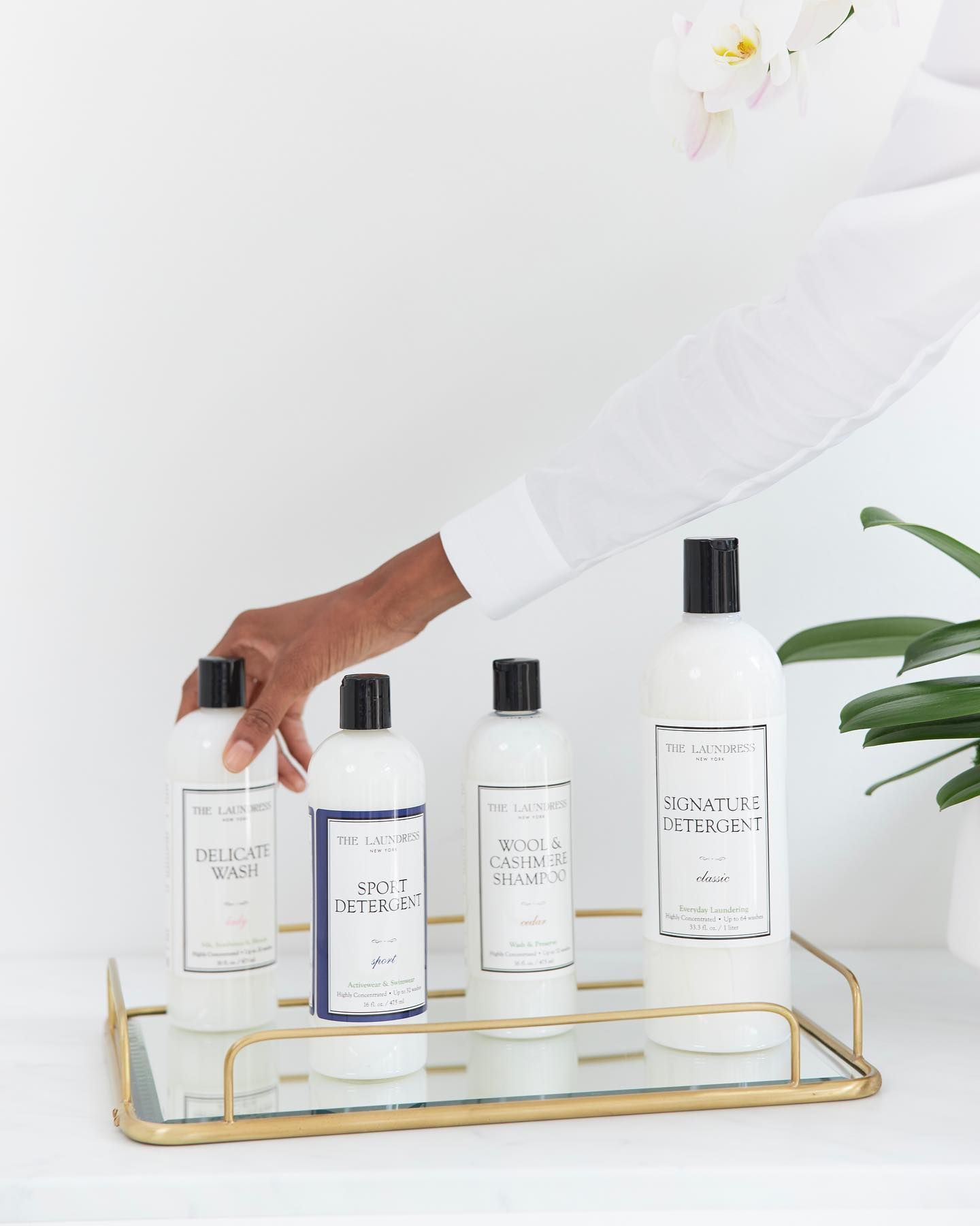 Wool Cashmere Shampoo Cedar Scent The Laundress In 2021 Washing Clothes Fragrance Free Products Detox Kit