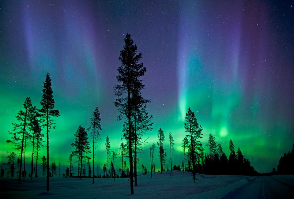 14 Must See Places In Scandinavia Northern Lights Photography See The Northern Lights Northern Lights