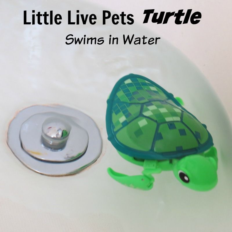 Tyler Loves The Little Live Pets Turtle Toy Best Gifts Top Toys Little Live Pets Pet Turtle Cool Toys For Boys