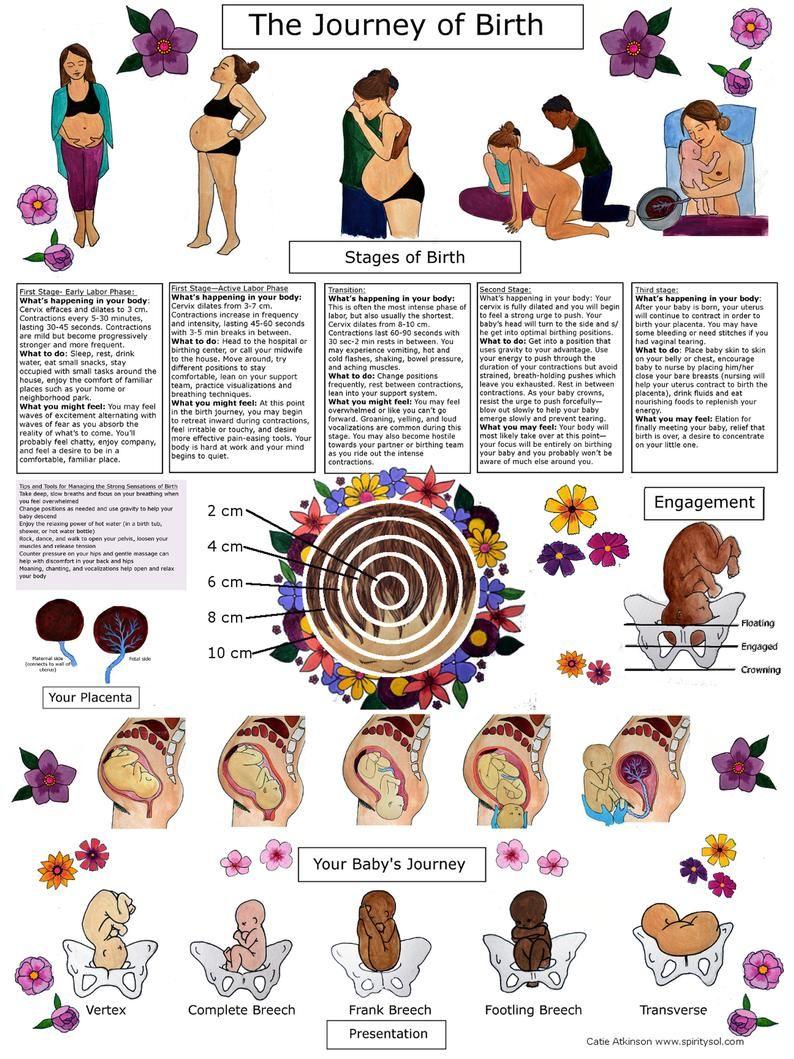 DIGITAL Journey of Birth Poster/ Childbirth Educat