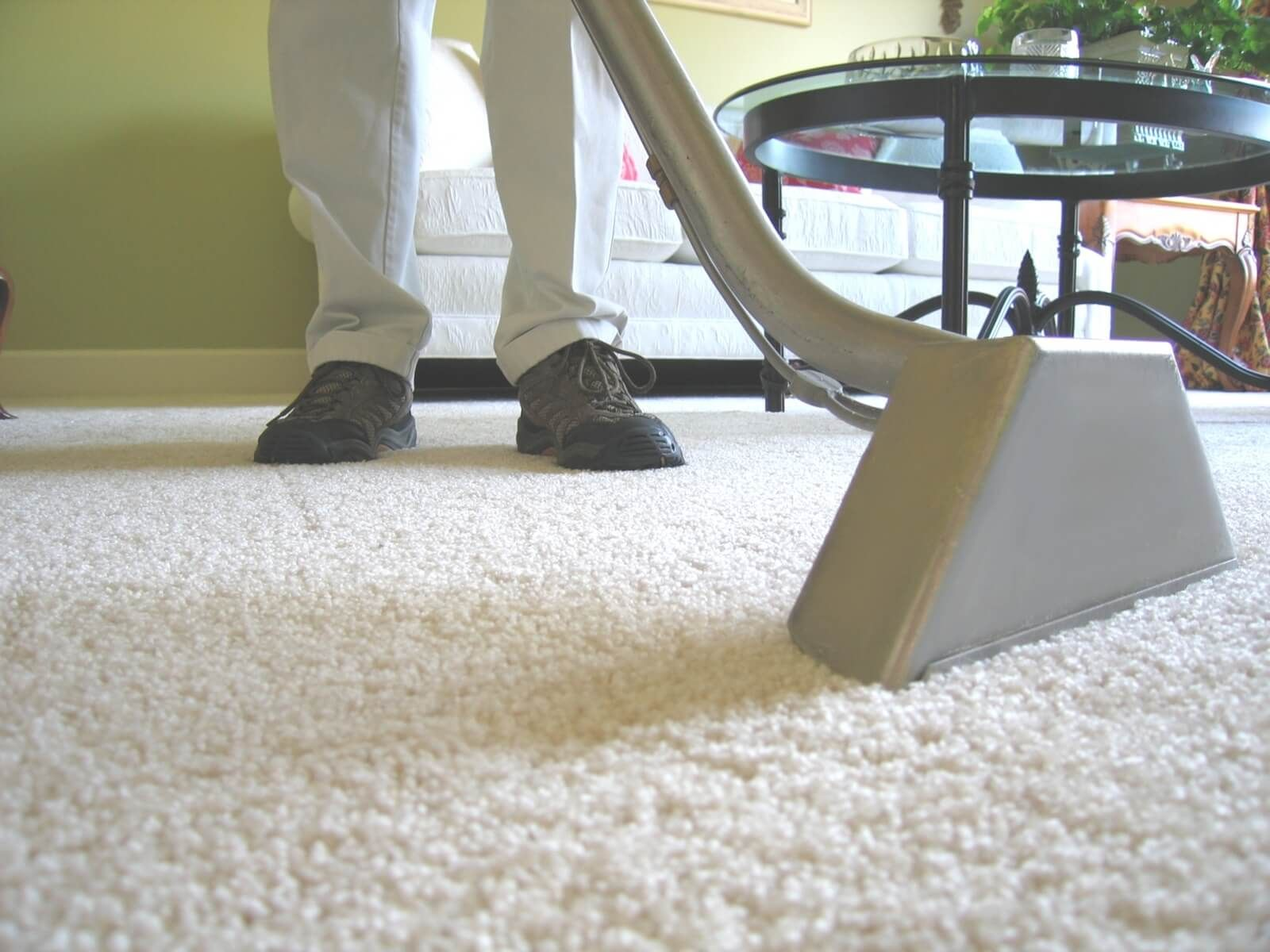 Best Carpet Cleaning Service In Chicago Choice Janitorial Carpet Cleaning Hacks Remove Pet Stains How To Clean Carpet